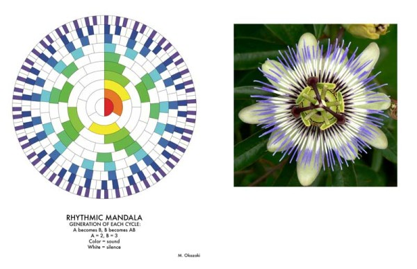 "3) A rhythmic cycle visualization, where each ""generation"" of the rhythm is similar to the previous one, but more detailed, following a growth pattern from nature. 4) A Passion Flower, which has a similar kind of geometry."
